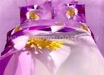 Постельное белье евро стандарта TS03-FS812 сатин 2 наволочки в интернет-магазине Моя постель