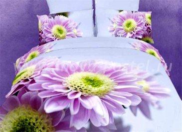 Кпб сатин Семейный TS05-FS619 2 наволочки (нежно-лиловые герберы) в интернет-магазине Моя постель