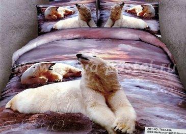 Кпб сатин 2 спальный 50*70 (белый медведь на закате) в интернет-магазине Моя постель