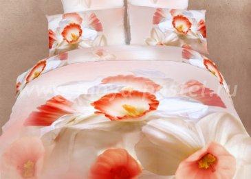 Двуспальное постельное белье сатин TS02-206-50 в интернет-магазине Моя постель