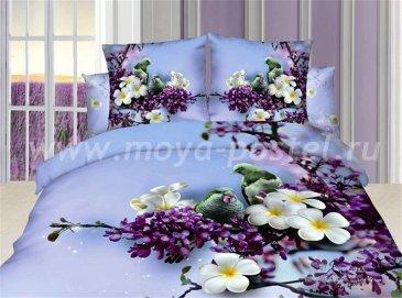 Кпб сатин Семейный 2 наволочки TS05-753 (птицы на сирени) в интернет-магазине Моя постель