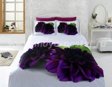 КПБ Bamboo 3D Digital 1331-02 в интернет-магазине Моя постель