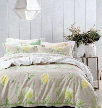 Постельное белье TS05-X47 семейное 2 наволочки в интернет-магазине Моя постель