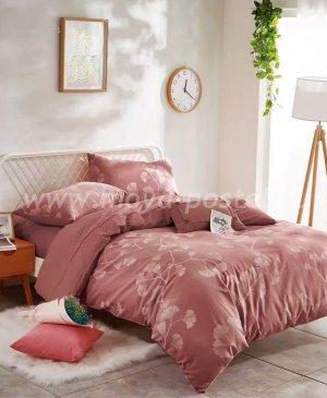 Постельное белье Tango Nature WC03-03 Евро в интернет-магазине Моя постель