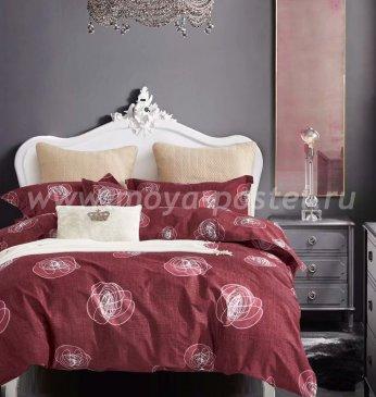 Постельное белье TPIG6-553 Twill евро 4 наволочки в интернет-магазине Моя постель
