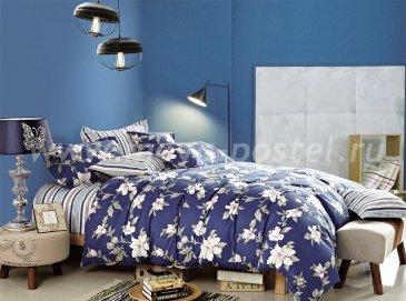 Двуспальное постельное белье Twill TPIG2-117-50 в интернет-магазине Моя постель