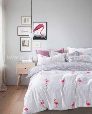 Постельное белье TPIG2-529-50 Twill двуспальное в интернет-магазине Моя постель