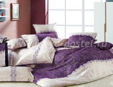 Twill семейный (фиолетово-бежевый узор) в интернет-магазине Моя постель