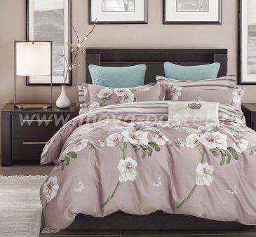 Постельное белье TPIG5-809 Twill семейное в интернет-магазине Моя постель
