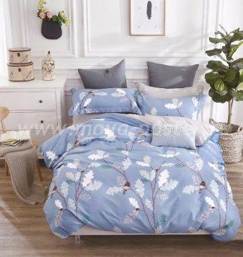 Постельное белье TPIG6-540 Twill евро 4 наволочки в интернет-магазине Моя постель