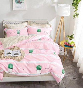 Twill евро 4 наволочки (кактусы) в интернет-магазине Моя постель