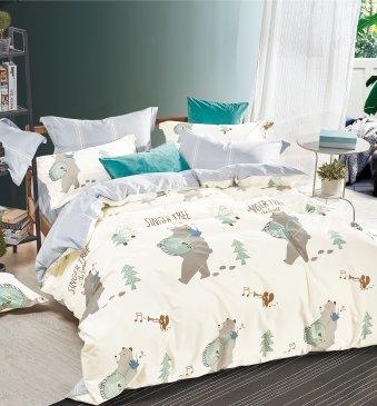 Кпб сатин TS02-X70-50 двуспальный в интернет-магазине Моя постель