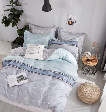 Постельное белье Twill TPIG4-763 полуторное в интернет-магазине Моя постель