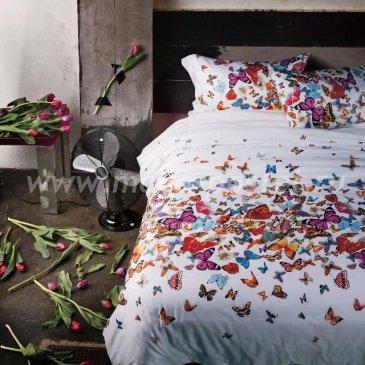 Кпб Египетский хлопок TIS07-126 евро 4 наволочки в интернет-магазине Моя постель