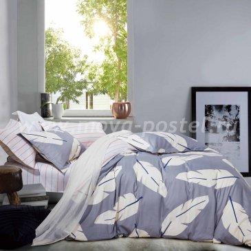 Постельное белье TPIG4-820  Twill полуторное в интернет-магазине Моя постель