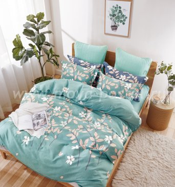 Кпб Фланель MOMAE36 Евро 2 наволочки в интернет-магазине Моя постель