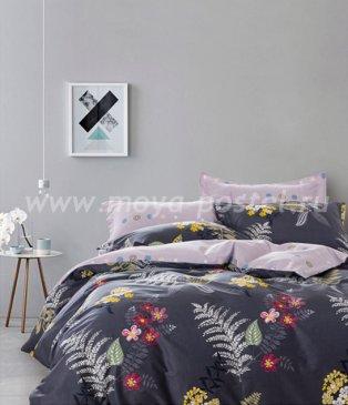 Постельное белье Twill TPIG5-585 семейное в интернет-магазине Моя постель