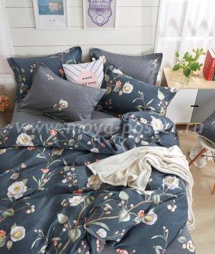 Постельное белье Twill TPIG2-233-50 двуспальное в интернет-магазине Моя постель