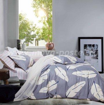 Twill евро 4 наволочки (серые перья) в интернет-магазине Моя постель