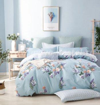 Постельное белье TPIG4-672 Twill полуторное в интернет-магазине Моя постель