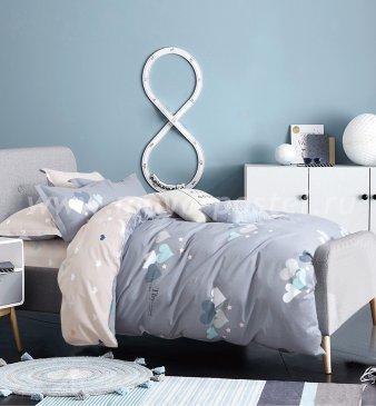 Постельное белье TPIG2-489-50 Twill двуспальное в интернет-магазине Моя постель