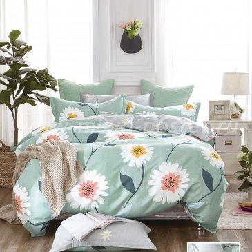 Постельное белье TPIG6-411 Twill евро 4 наволочки в интернет-магазине Моя постель