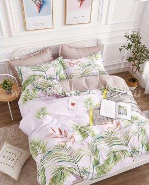 Постельное белье TPIG6-427 Twill евро 4 наволочки в интернет-магазине Моя постель