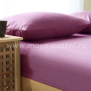 Простыня SOHO collection BS2426-59, сиреневый в интернет-магазине Моя постель