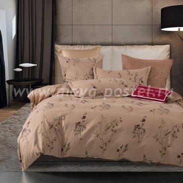 Комплект постельного белья Сатин вышивка CNR049, двуспальное простыня на резинке 180х200 в интернет-магазине Моя постель