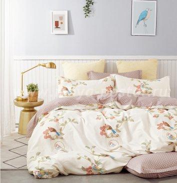 Постельное белье TPIG2-685-70 Twill двуспальное в интернет-магазине Моя постель