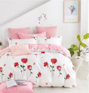 Постельное белье Twill TPIG6-682 евро 4 наволочки в интернет-магазине Моя постель
