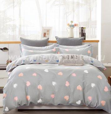 Постельное белье Twill TPIG2-901-50 двуспальное в интернет-магазине Моя постель