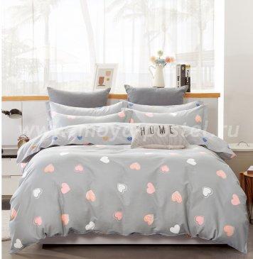 Постельное белье Twill TPIG2-901-70 двуспальное в интернет-магазине Моя постель