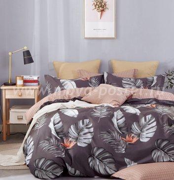 Постельное белье Twill TPIG2-912-70 двуспальное в интернет-магазине Моя постель