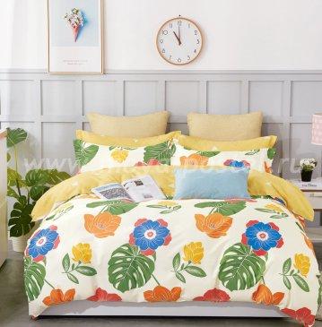 Постельное белье Twill TPIG4-906 полуторное в интернет-магазине Моя постель