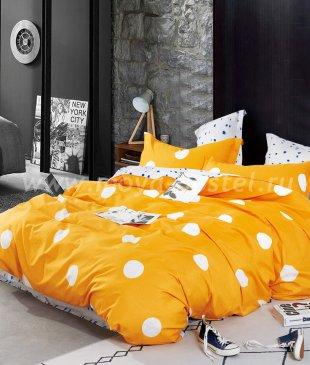 Постельное белье Twill TPIG4-1028 полуторное в интернет-магазине Моя постель