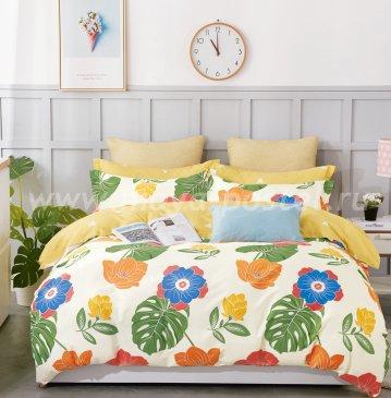 Twill TPIG6-906 евро 4 наволочки в интернет-магазине Моя постель
