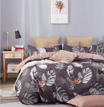 Постельное белье Twill TPIG6-912 евро 4 наволочки в интернет-магазине Моя постель