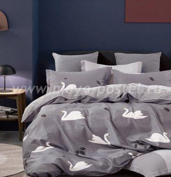 Постельное белье Twill TPIG6-916 евро 4 наволочки в интернет-магазине Моя постель