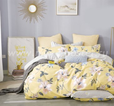 Постельное белье Twill TPIG2-496-50 двуспальное в интернет-магазине Моя постель