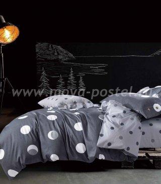 Кпб Египетский хлопок TIS05-145 семейный в интернет-магазине Моя постель