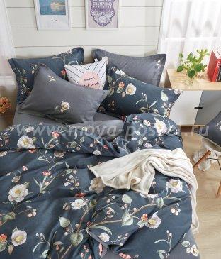 Постельное белье Twill TPIG5-233-70 семейное в интернет-магазине Моя постель