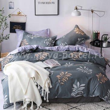 """Постельное белье Beautiful коллекция """"Design"""", полуторное наволочки 70х70 в интернет-магазине Моя постель"""