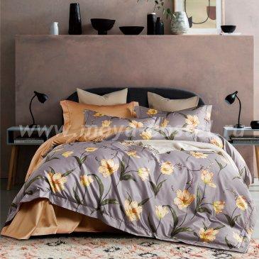 Постельное бельё Sharmes «Tulips» полуторное в интернет-магазине Моя постель