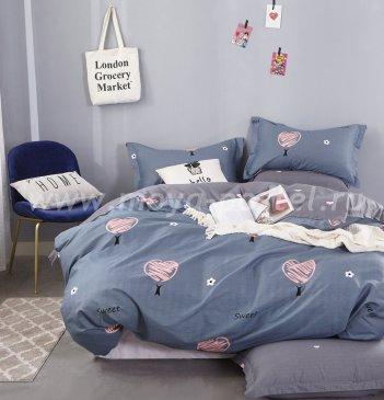 КПБ Twill TPIG6-506 двуспальный в интернет-магазине Моя постель