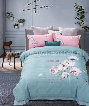 Кпб Фланель MOMAE79 Евро 2 наволочки в интернет-магазине Моя постель