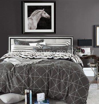 Постельное белье Twill TPIG3-550 евро 2 наволочки в интернет-магазине Моя постель