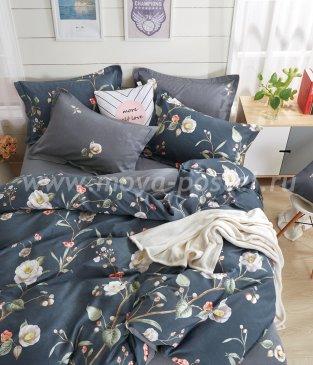 Постельное белье Twill TPIG3-233 евро 2 наволочки в интернет-магазине Моя постель