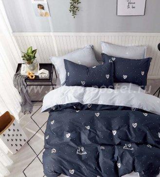 Постельное белье Twill TPIG2-1049-50 двуспальное в интернет-магазине Моя постель