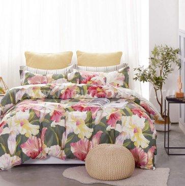 Постельное белье Twill TPIG5-1040 семейное в интернет-магазине Моя постель